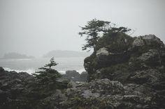 #Photography #Travel #Pacific #Northwest #Canada #Coast #Nature #50mm #VSCO