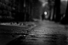 500px / Photo #dof #field #white #depth #photo #of #black #photograph #bokeh #rain #and