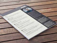 Rabbe Resume - Free PSD Resume Template in Four Color Options
