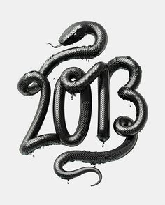 2013   Year of the Black Water Snake (by David McLeod)