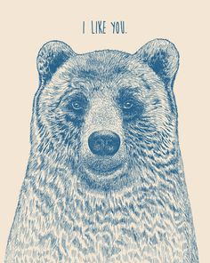 Bear (Ivory)