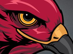 Eye Of The Hawk #hawk