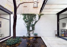 Courtyard with pond. Rockefeller Guest House by Phillip Johnson. © Dean Kaufman. #courtyard #pond #brickwall