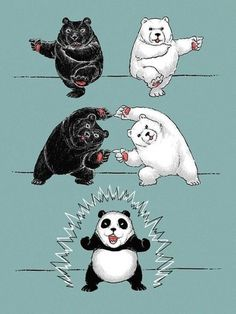 (1) Wall Photos #illustration #panda #funny