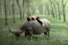 Photography by Dewan Irawan » Creative Photography Blog