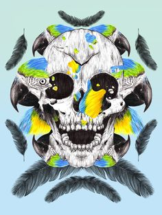 Parrot and Skull #skull #parrot