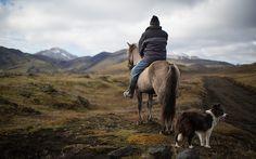 Nordic Landscapes24 #photography #horse #nordic #landscape