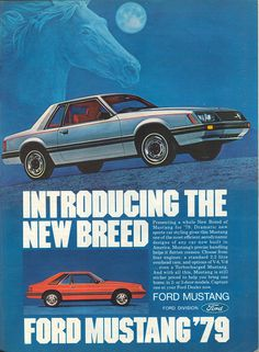 photo #breed #print #design #graphic #advertising #vintage #mustang #car