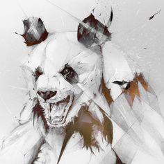 PANDA on Behance #illustration #panda