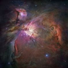 Orion Nebula #stars #nebula #space #orion