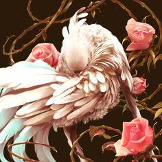 Pandycants #birdy