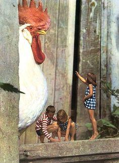 Tutte le dimensioni |Gunnel Linde - The Enchanted Forest | Flickr – Condivisione di foto! #children #animal