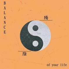 Yin Yang ☯️