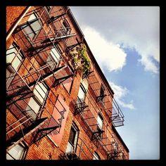 Photo by scmccornick • Instagram #brick #dc #sean #photography #building