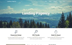 Landing Pagency
