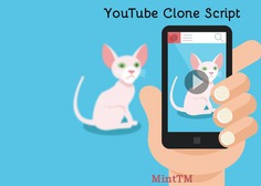 Three Fascinating Highlights About YouTube Clone
