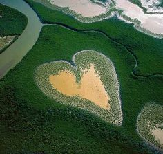 Aerial Photography by Yann Arthus-Bertrand