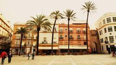 Cadizzle 2011 on Behance #palm #spain #wallb #row #cadiz #trees
