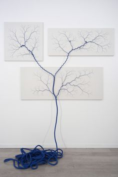 """""""Ciclotrama"""" site-specific series by using nylon rope and countless nails."""
