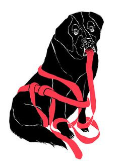 Hund #fischer #illustration #maria #dog