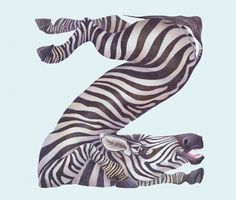 Animals in Alphabet on the Behance Network #illustration #alphabet #zebra #typography