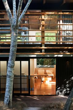 Glade House – modern home with raking ceilings and exposed rafters