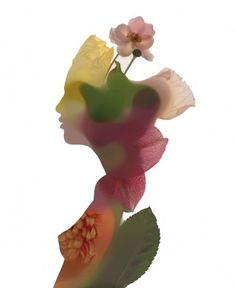 The impossible image #howard #nick #knight #wakefield