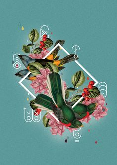 Collage Poster on Behance #tropical #floral #illustration #flower #brazil #collage