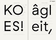 GT Haptik - Grilli Type #font #swiss #gt #haptik #type #grilli #typography