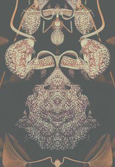 Altered Flora I