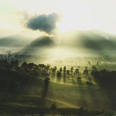 tumblr_mucycdjiTR1qi711zo1_1280 #clouds #volumetric #sunshine #lighting #rays #trees