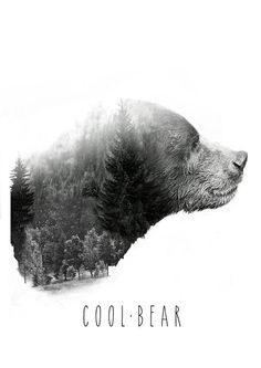 Fear the bear #design #design4 #istanbul #fashion #logo #coolbear