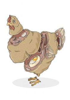 Alexandre Godreau - Sliced Creatures #egg #poultry #feathers #bird #dissected #illustration #chicken #sliced