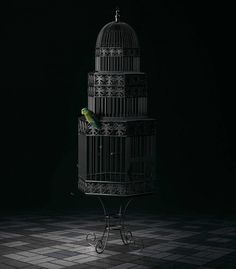 Free Bird: Creative Photo Manipulations by Mike Campau