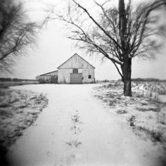 photo #snow #house #tree