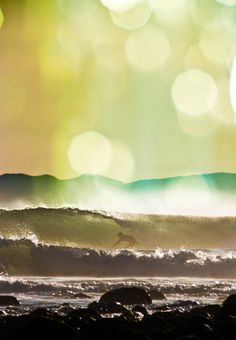 """â™"""" a beautiful thing is never perfect... #surf"""