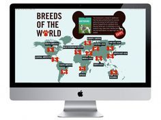 Stephany Gill | Breeds of the World #gill #interactive #breeds #world #stephany #dogs #map