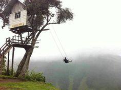 Wyniki Szukania w Grafice Google dla http://img.mypersianforum.com/images/53792486289889881284.jpg #swing #nature #treehouse #tree