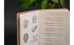 Lacy Kuhn via www.mr-cup.com #print #menu