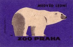 Oliver Tomas | Text Proportion Utility » Blog Archive » Animal illustrations from the Prague Zoo (1963) #polar #color #illustration #vintage #bear