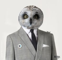 """""""Mr B!rds for president"""" Birds communication agency (Toulouse FRANCE)link #photo manipulation #collage #bird #owl #head #suit #formal"""