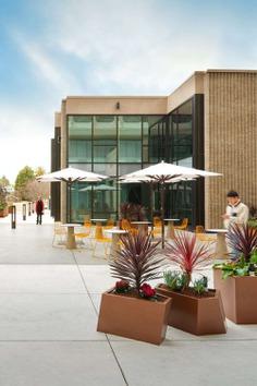 courtyard, landscape, AP+I Design