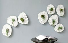 SEED Wall Planter - #design, #productdesign, #industrialdesign, #objects