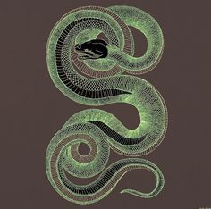 Hannah Stouffer Illustration #hannah #in #snake #the #glow #stouffer #dark