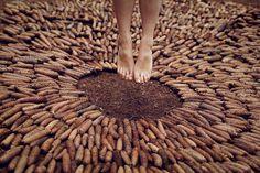 Katja Kemnitz #pineapple #feet