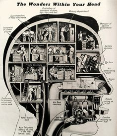 """this isn't happinessâ""""¢ photo caption contains external link #mind #infographic #office #head #brain #illustration"""