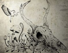 entre o sublime e o trágico #deer #ink #draw #bird #illustration #mushrooms #skull