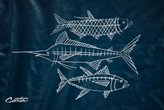 Karl Hebert's Design Work #illustration #tshirt #fish