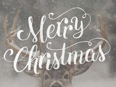 Merry Christmas, y'all! #holiday #typography