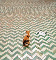 photo #tiles